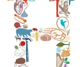 H is for... (11 x 17 Letter H Poster)