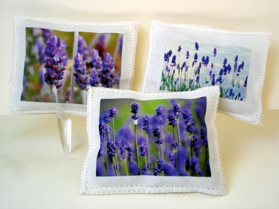 Organic lavender sachets, set of three, lavender fields