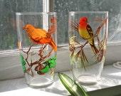 Pair  Bird Motif Glasses