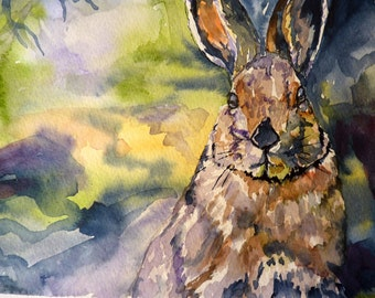 Springs Almost Hare Watercolor Art Print by Maure Bausch