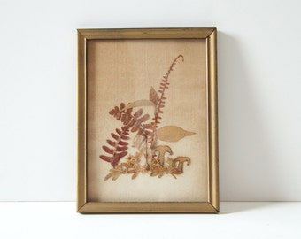 Fern and Fungi Framed Artwork