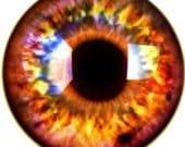Glass Eyes Fantasy Fire Eyes Taxidermy yellow orange eye set of 2, 14mm Steampunk Jewelry and Pendant Making