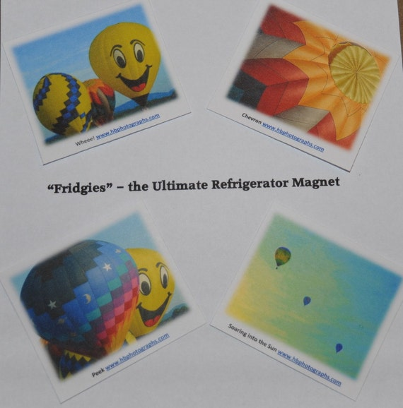 Fridgies - Refrigerator Magnets