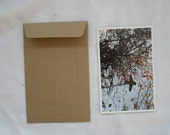 of 100 Kraft size A6 or 4.5 inch X7 inch great for photo or postcard flat envelopes