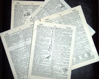 vintage paper ... DICTIONARY 65 PAGES TTTTTsss UUUUsss and VVVssss ...