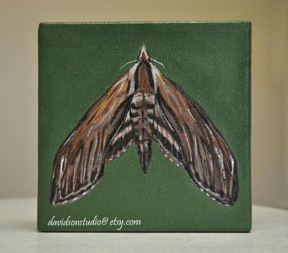Original Acrylic PAINTING - Gypsy Moth Insect Gallery Wrap Mini Canvas 5x5 Acrylic Painting