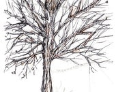 Winter Tree Leaves Pen and Ink Drawing Original ACEO
