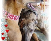 Spring Holiday assortment, Greyhounds celebrate Valentines and Easter 2 of each design