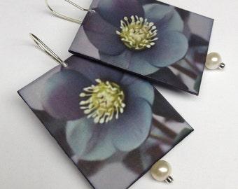 Paper Earrings: Denim Blues and Pearls on Photo Paper, Hellebore Flowers, Flower Earrings