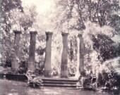 The Doric Columns 5 x 5 Diana Mini Print