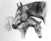 commission custom horse portrait
