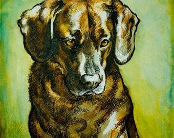 Custom dog portrait -commission a likeness of your pet