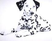 Custom 12x12 Pop Pet Portrait Painting