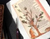 Original Bunny Gazing at a Plum Tree