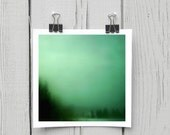 Fine art photograph (turquoise 007) emerald green whimsical forest home decor