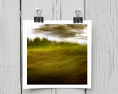 Fine art photograph (landscape 032) olive green abstract canadian cottage home decor