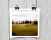 Fine art photograph (landscape 021) olive green homesteading home decor