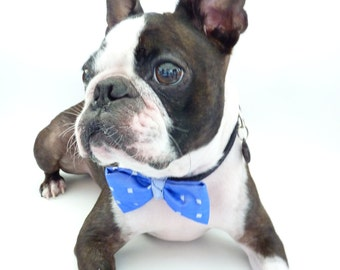 """Pet Bow Tie / The """"BubbaBow"""" Tie for Happy Pets- Blue Silk / Made to Order"""