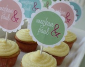 Custom order for Lindsey - 25 cupcake toppers