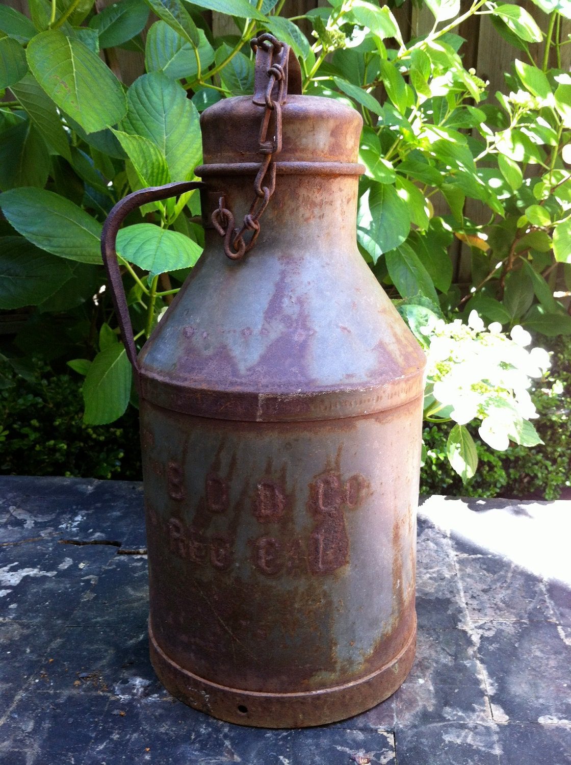 Vintage Creamery Metal Milk Can With Lid And Chain