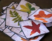 "Eco Friendly Stickers - Fall Leaves Envelope Seals, 2.5"" - Set of 25"