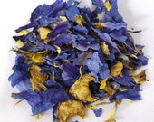 Egyptian Blue Lotus Lily - Aphrodisiac - Enhance Sexual Desire Naturally