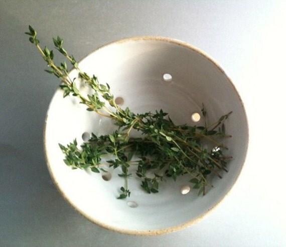 Petite Colander Perfect 4 Berries, Herbs, Pasta, or Peas By MirandaGould