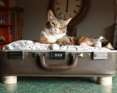 FREE SHIPPING  Cozy Cargo Suitcase Pet Bed - Brown and Purple - Birch Round Legs - Upcycled Luggage