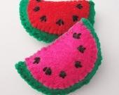 2 Magnets - Juicy Watermelon Summer Set