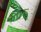 SALE - Mint and Nettle Milk and Honey Body Lotion