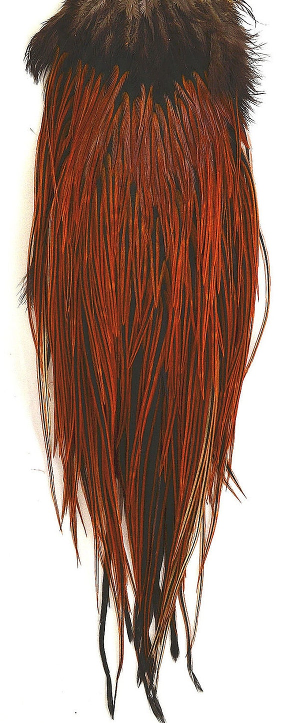 Full Rooster Saddle Hackle Natural Red/Ginger/Black Furnace. Over 250 feathers, many long feathers for hair extensions.