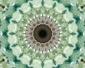 Flourite Mandala - 5x5 - Aluminum Print