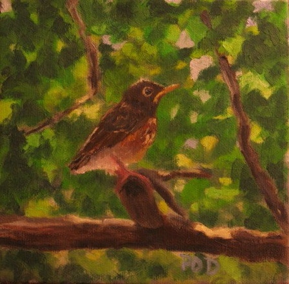 "Oil Painting  on Canvas Baby Robin 6""x6""   gallery wrapped canvas"