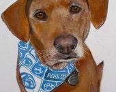 Pet Portrait - Your Best Friend or as a Gift