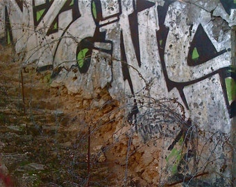 Crumbling Creation Graffiti Photo TEL AVIV Flipping Gypsy Photography signed phipps y moran Free Mat ready to frame