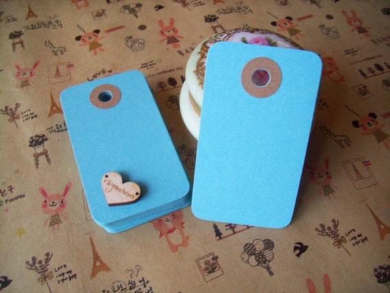 Aquamarine BLUE medium reinforced blank craft tags