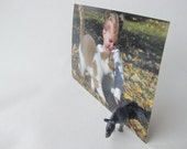 Animal Magnetism Picture Stand - Rhino