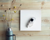 Feather Home Decor Wall Art  12x12 Gallery Mounted   Black and White Feather Art