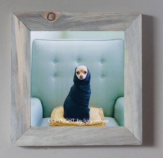 Pinky Novak Framed Fine Art Photograph