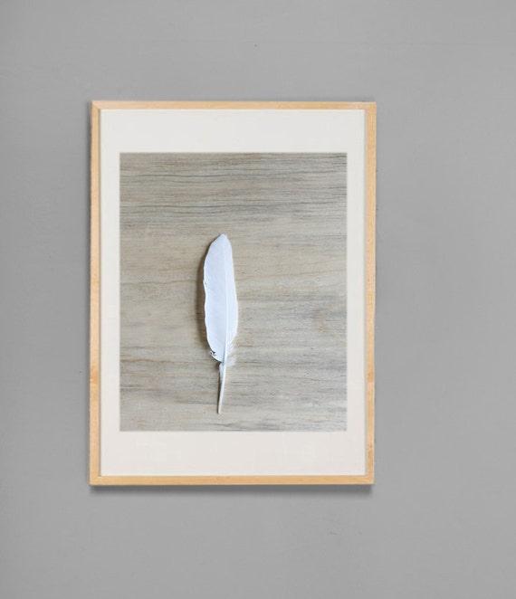 Modern Zen Wall Art Fine Art Feather Art Natural Neutral 11x14 White Feather on Blue Pine