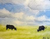 ACEO original watercolor - cows in field