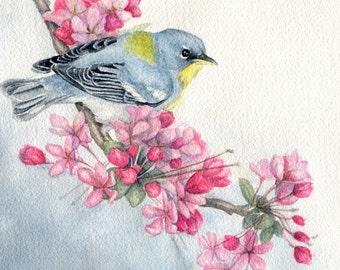"Bird ACEO Art card Giclee Fine Art Print of original watercolor bird painting northern parula warblerr - 2.5"" x 3.5"""