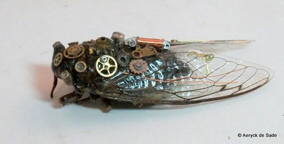 Steampunk Cicada Bug in Shadow Box Display