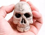 Crazy-Ass Skull sculpture