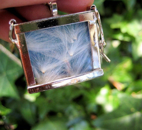 Dandelion Locket Clear Glass Locket with Silky White Seed Pods Nature Jewlry