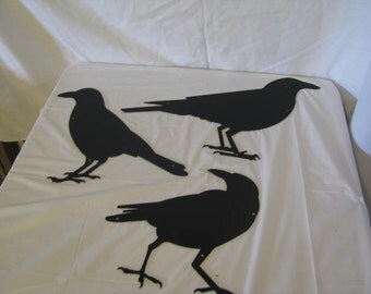 Juvenile Raven Ground Crow Metal Wall Yard Art Silhouette Set of 3