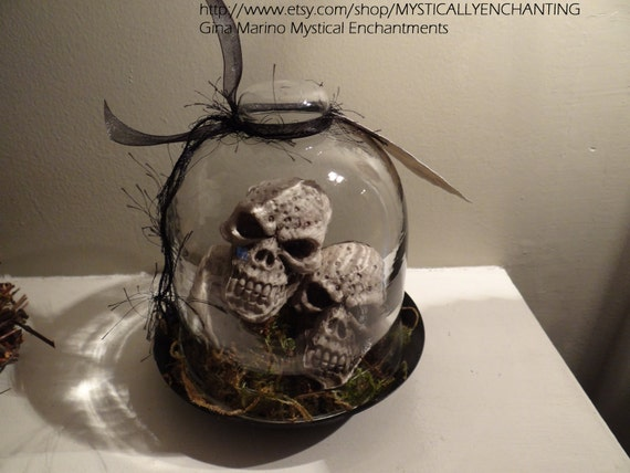 Glass Cloche with Skulls