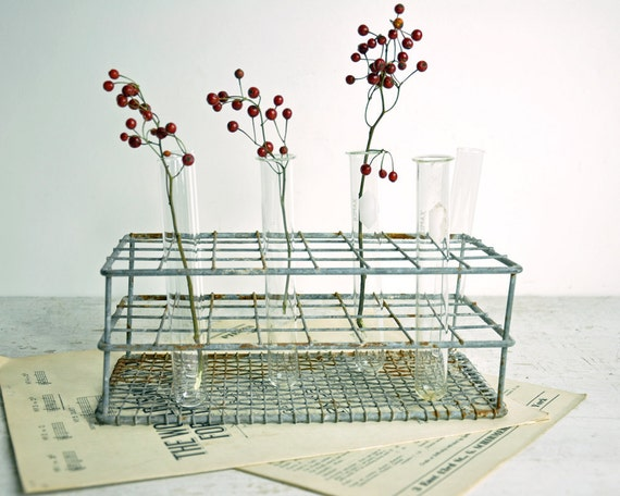 Vintage Metal Chemistry Test Tube Rack / Industrial Decor