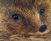 Original oil painting 'Hedgehog on straw'