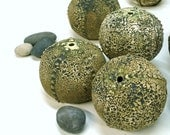 Textured Green Sea Urchin Pot, Sculpture, Beach Nautical Decor, Round Geometric, Handmade Pottery